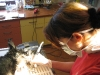 Zahnsanierung beim Hund1